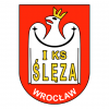 free-vector-sleza-wroclaw-0_030860_sleza-wroclaw-0