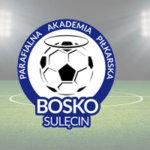 Bosko Sulecin