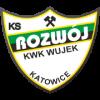 logo_rozwoj_katowice2_duze